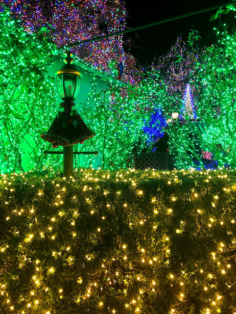 Holiday tradition of viewing Christmas lights
