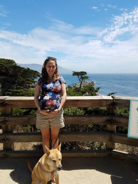 natural pregnancy woman standing by ocean with dog