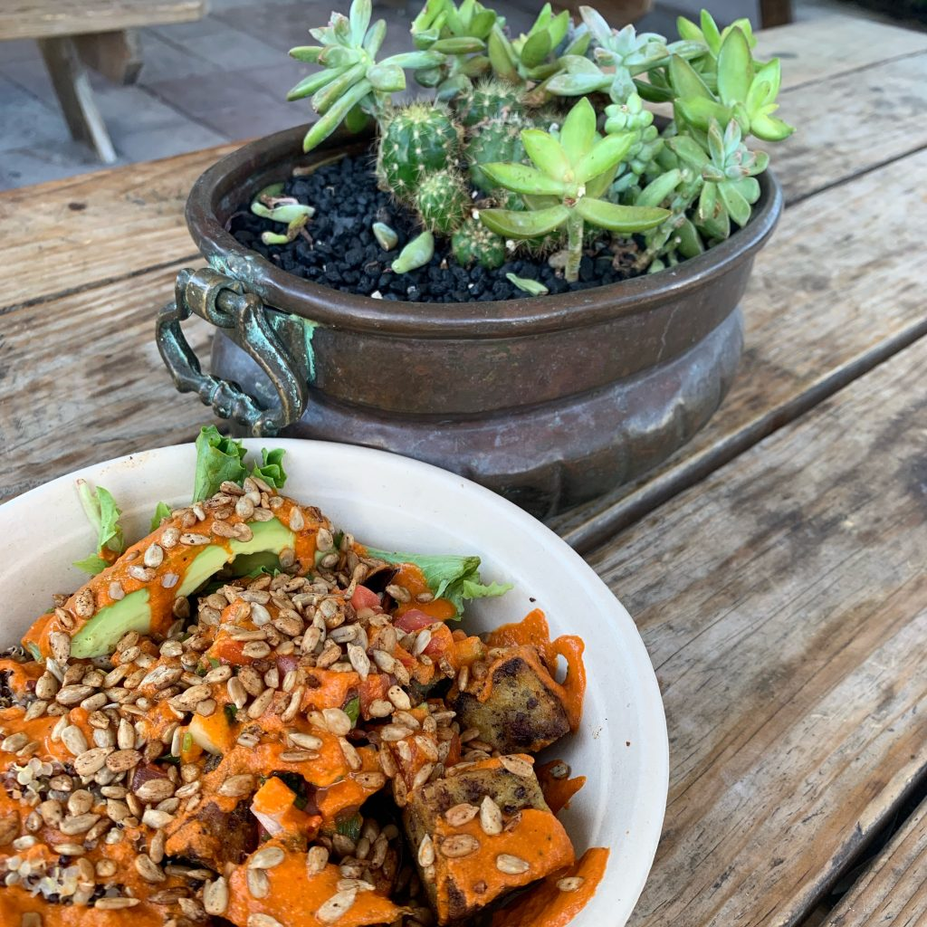 things you don't want to miss on your trip to Miami Beach vegan food