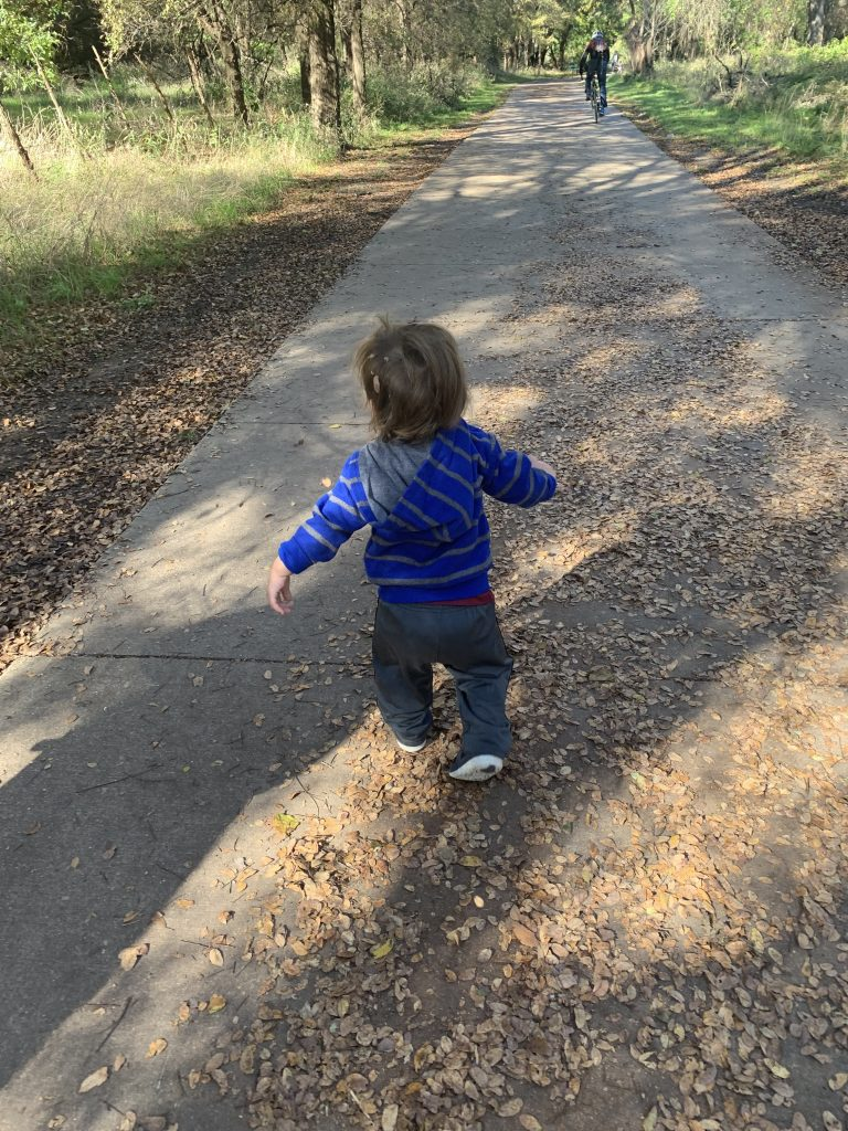 things to do in Austin with toddlers free forest school