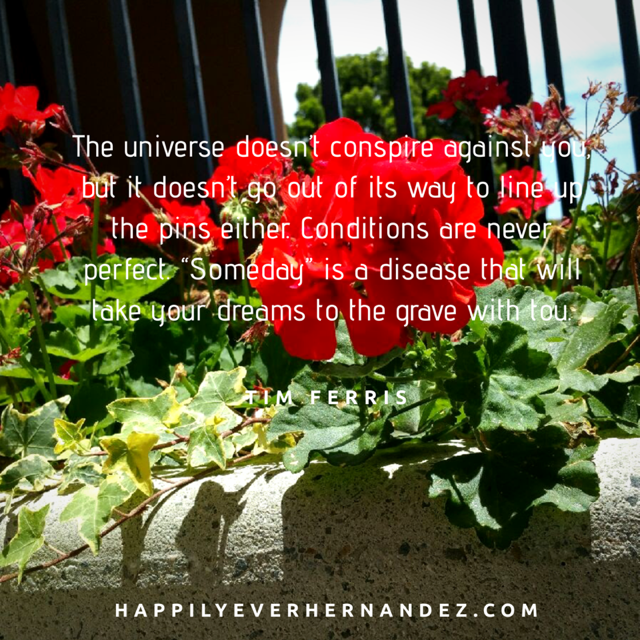 Ultimate 50 Quotes About Health For A Motivational 2019 Red flowers in concrete planter