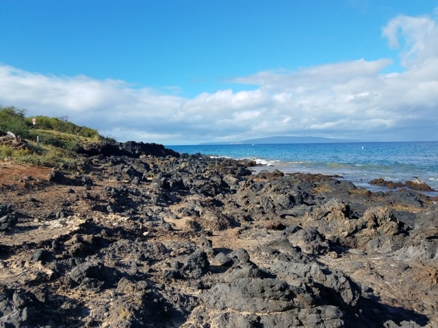 maui travel guide ahihi kinau natural area reserve ocean view with dried lava